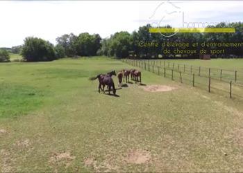 La Champenotte - Centre d'élevage - Situation – infrastructure