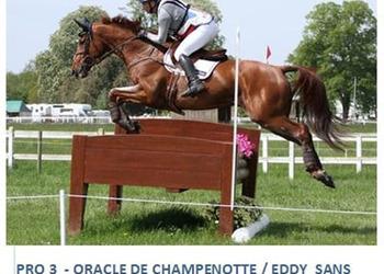 Oracle de Champenotte (Eldorado de Hus)